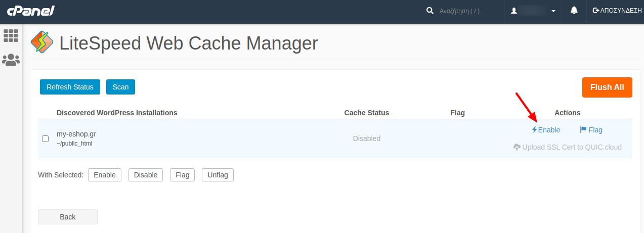 Ενεργοποίηση LiteSpeed cache σε cPanel