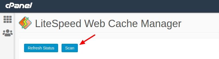Scan μέσα από το Cpanel για εγκατάσταση LiteSpeed Cache