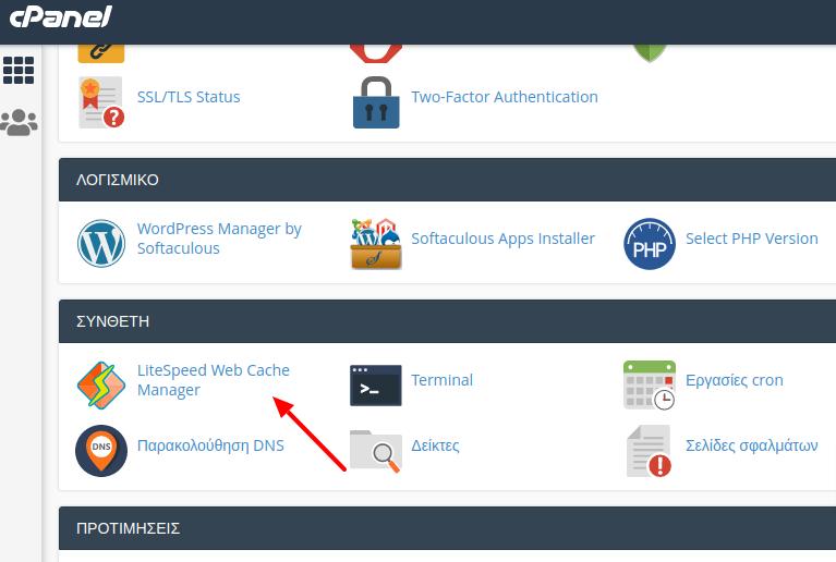 Επιλογή LiteSpeed Web Cache Manager στο cPanel